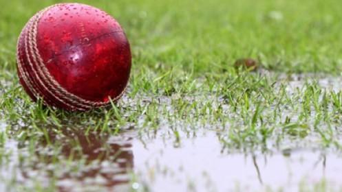 cricket-rain